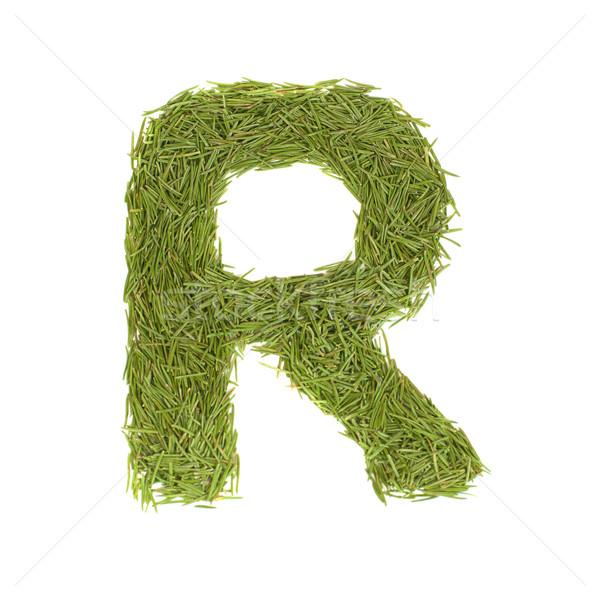 Green alphabet, letter R Stock photo © vapi
