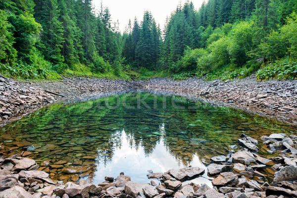 Lake in the mountains Stock photo © vapi
