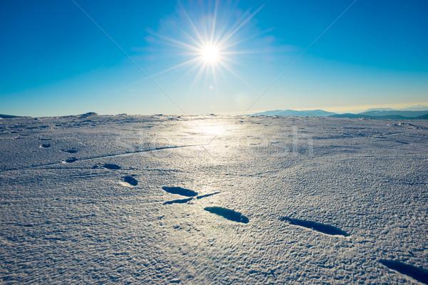 следов снега ярко пейзаж солнце зима Сток-фото © vapi