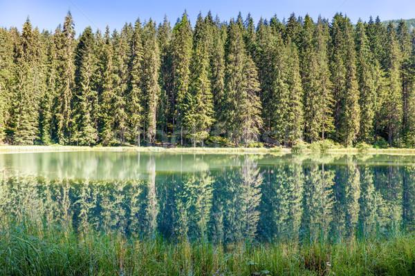 Stok fotoğraf: Orman · göl · dağlar · güzel · mavi · su
