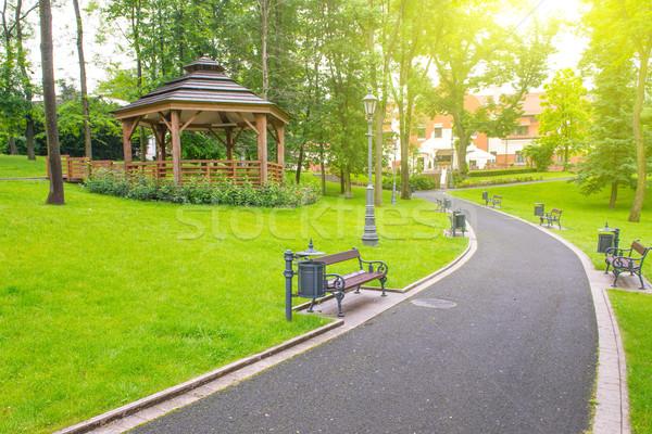 Road in the park Stock photo © vapi