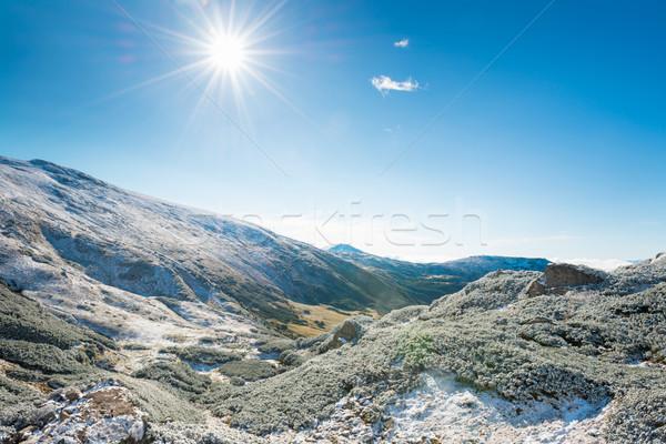 Winter mountains and sunny green valley Stock photo © vapi