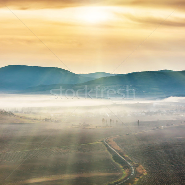 Blue mountains and road covered with mist  Stock photo © vapi