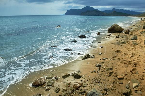 Zee surfen zandstrand bergen bewolkt hemel Stockfoto © vapi