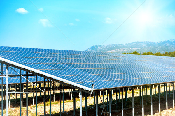 Many solar panels Stock photo © vapi