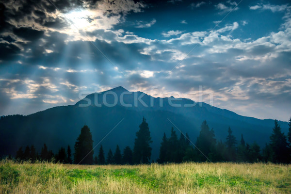 Green grass near mountain at night Stock photo © vapi
