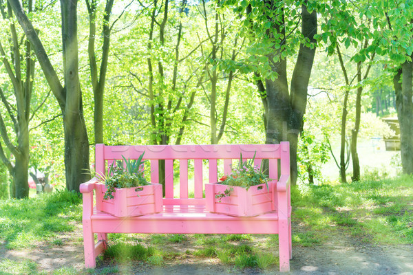 Pink bench in the green park Stock photo © vapi