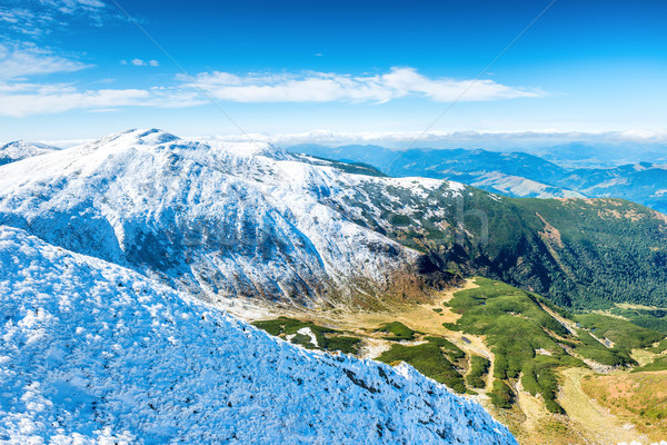 Green valley and white mountains Stock photo © vapi