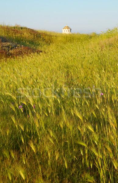 Campo hierba templo antiguos construcción paisaje Foto stock © vapi