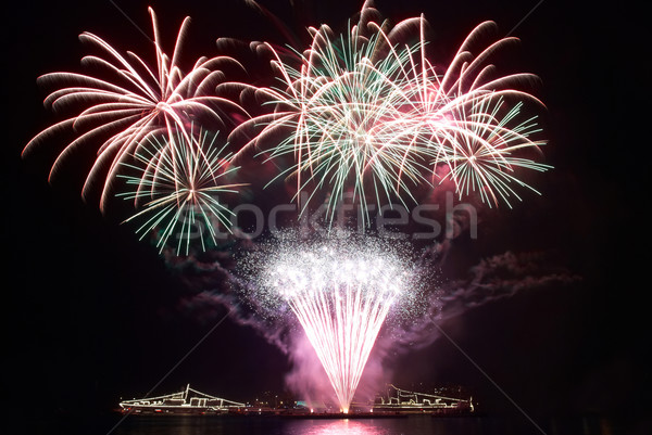 Színes tűzijáték fekete égbolt boldog fény Stock fotó © vapi