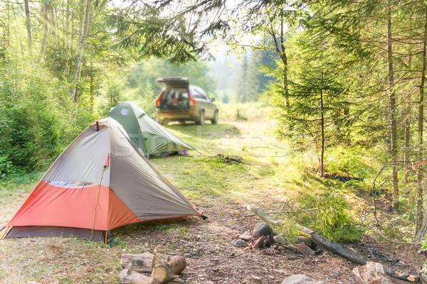 Confortável camping carro verde ensolarado gramado Foto stock © vapi
