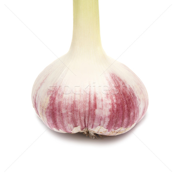 Garlic clove Stock photo © vapi