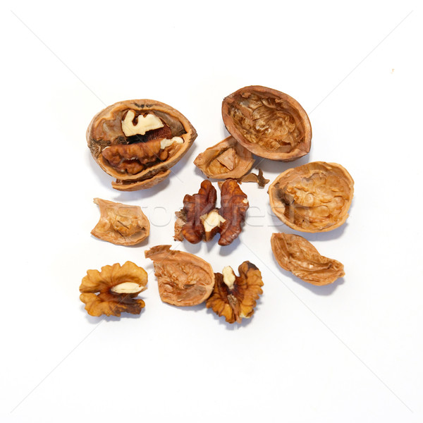 A walnuts isolated on white. Stock photo © vapi