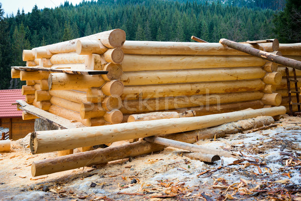 Country wooden house Stock photo © vapi