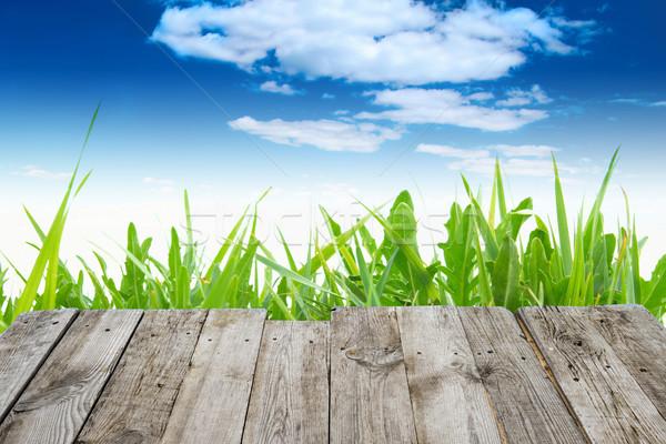 Stock fotó: Kilátás · fa · asztal · zöld · tavasz · üres · fából · készült