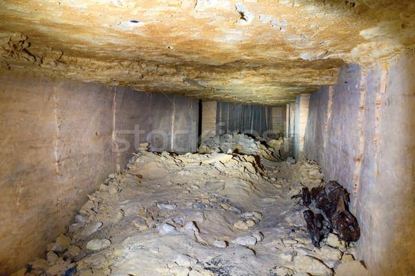 Tunnel pierre mine brique murs route Photo stock © vapi