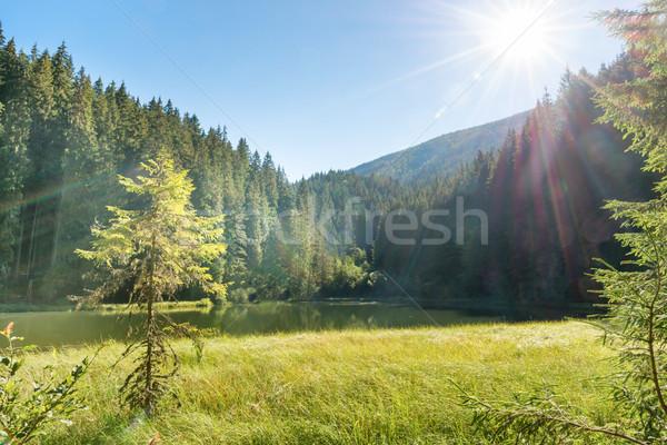 Mooie bos meer bergen Blauw water Stockfoto © vapi