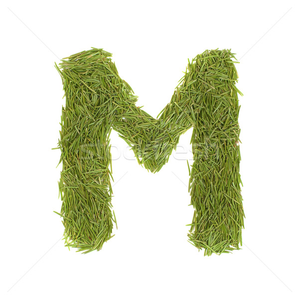 Green alphabet, letter M Stock photo © vapi