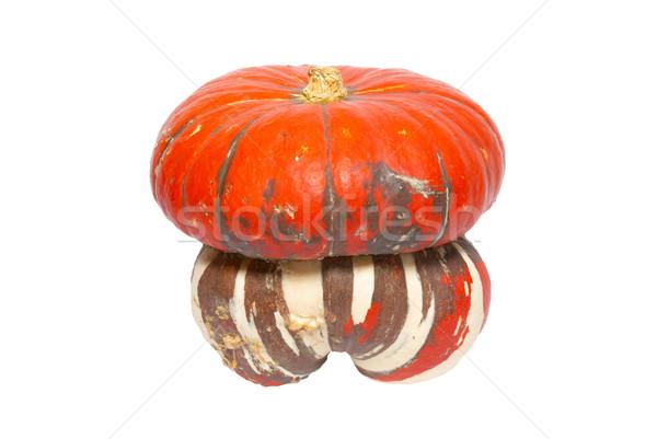 Red ornamental pumpkin isolated on white. Stock photo © vapi