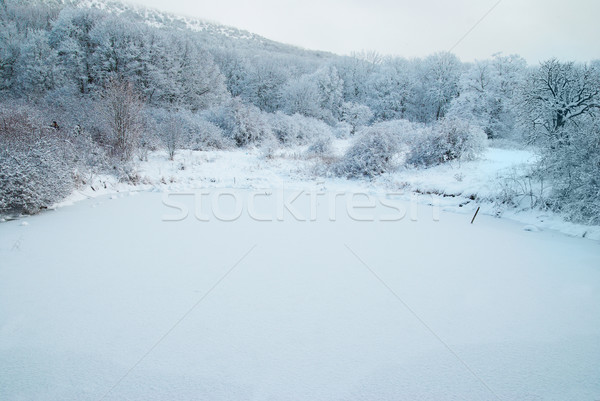 Сток-фото: зима · озеро · ледяной · лес · красивой · деревья