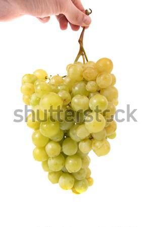 Hand holding bunch of grapes Stock photo © vapi
