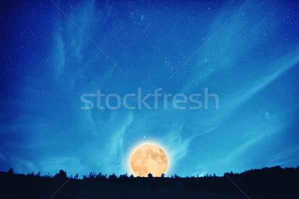 Pleine lune nuit sombre ciel bleu beaucoup étoiles Photo stock © vapi