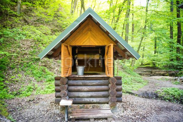 Oude houten goed groene bos metaal Stockfoto © vapi