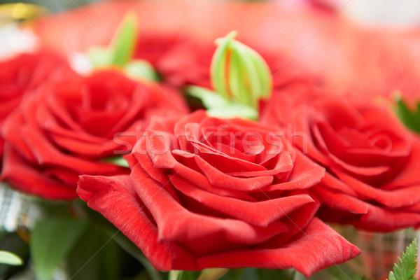 Bunch of red roses Stock photo © vapi
