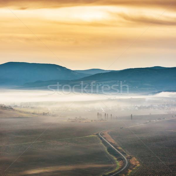 Foto d'archivio: Misty · strada · campi · tramonto · cielo · albero