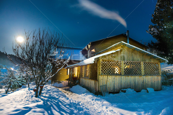 Wooden house in snow at winter night Stock photo © vapi