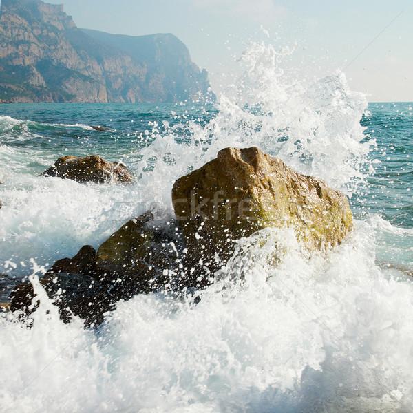 Storm. Waves and sea foam. Stock photo © vapi