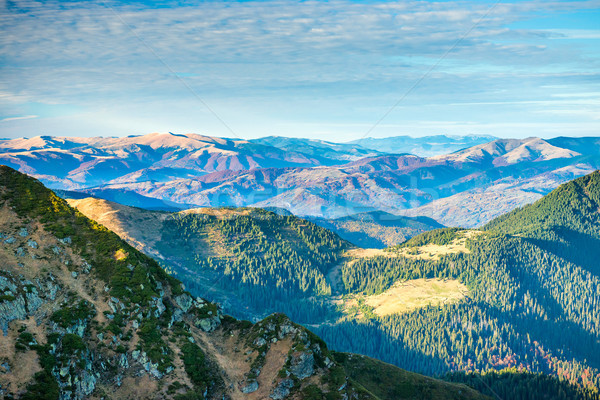 Beautiful green mountains and hills Stock photo © vapi