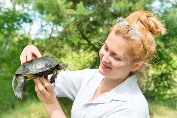 Bella donna tartaruga Foto d'archivio © vapi