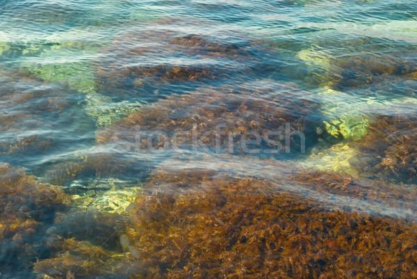 Wasseroberfläche Textur abstrakten Natur Meer Schönheit Stock foto © vapi