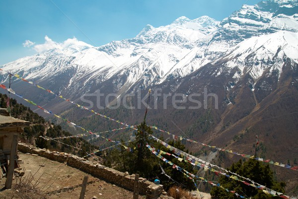Buddhist praying flags and mountains. Stock photo © vapi