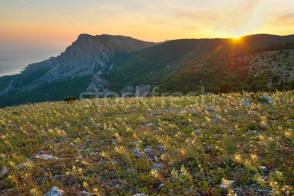 Foto stock: Montanas · campo · flores · amarillas · puesta · de · sol · cielo · agua