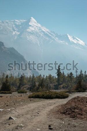 Tibetan road in Himalayan mountain. Stock photo © vapi