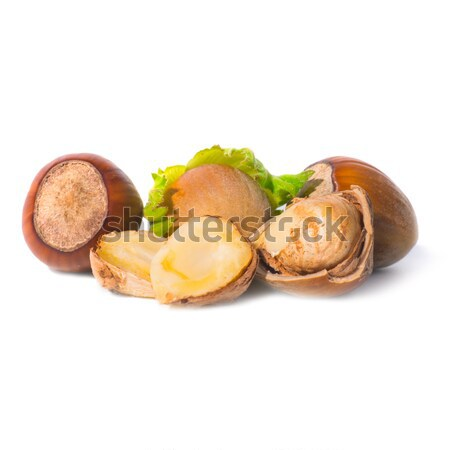 Pile of filbert nuts Stock photo © vapi