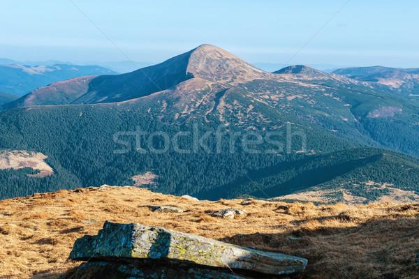 Beautiful valley in Carpathian mountains Stock photo © vapi