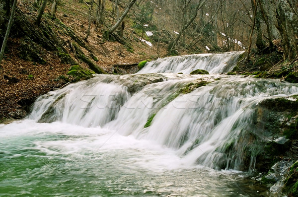 Stock photo: Rapid mountain river in the autumn forest.