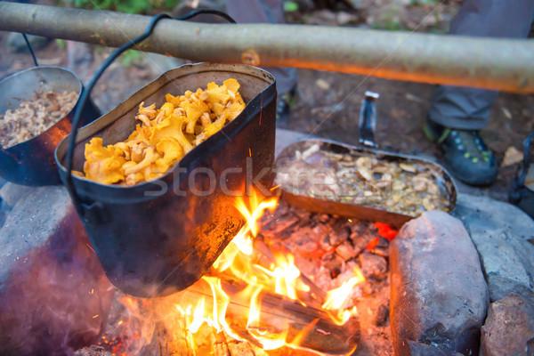 Bollitore completo funghi fuoco legno foresta Foto d'archivio © vapi