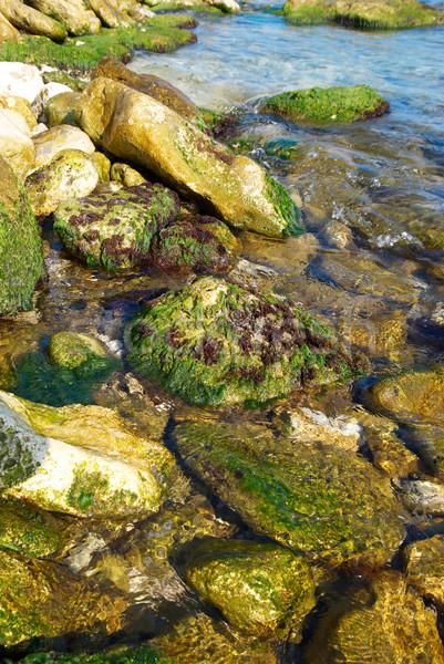 Costa pedras verde marinha água natureza Foto stock © vapi