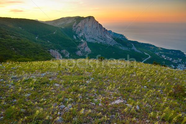 山 フィールド 黄色の花 日没 空 水 ストックフォト © vapi