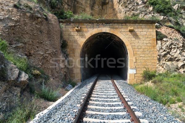 Oude trein tunnel spoorweg berg bouw Stockfoto © vapi