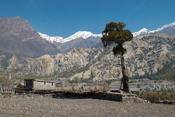 Tibetan village in Himalayan mountain Stock photo © vapi