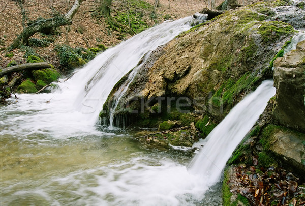Rapid mountain river in the autumn forest. Stock photo © vapi