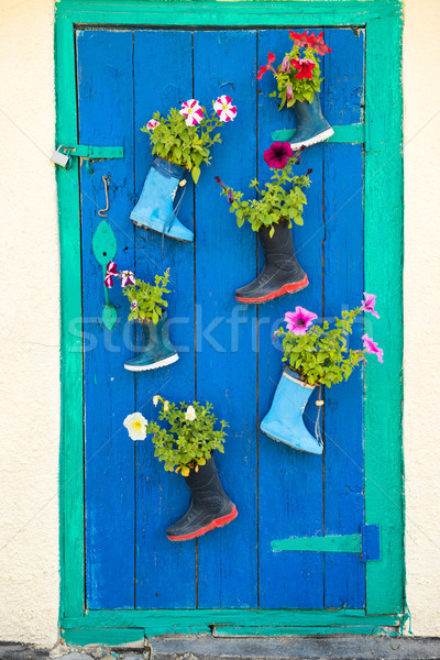 Old rubber boots with blooming flowers Stock photo © vapi