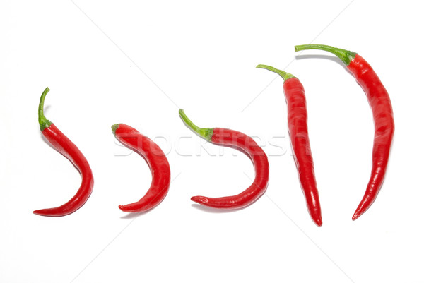 Row of red hot chili peppers Stock photo © vapi