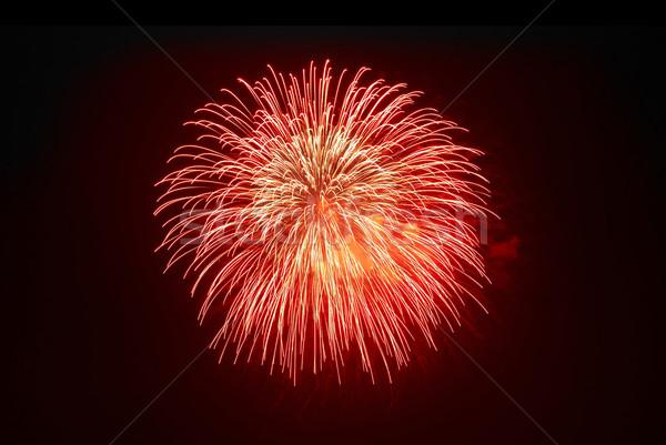 Gyönyörű tűzijáték fekete égbolt boldog fény Stock fotó © vapi