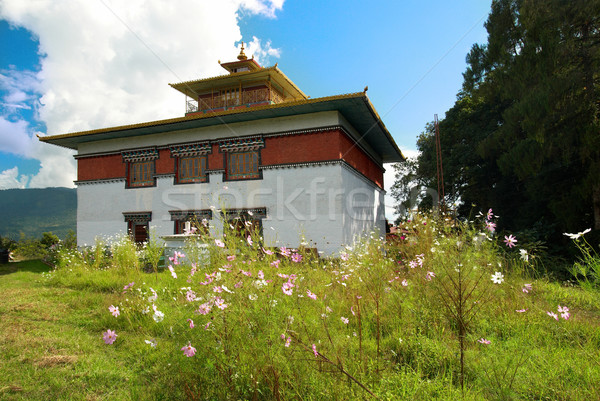 Indian tempio colorato pittura muri erba Foto d'archivio © vapi